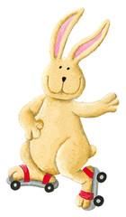 Funny rabbit skating