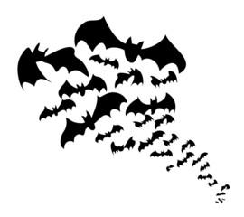 Stormo di pipistrelli neri in volo