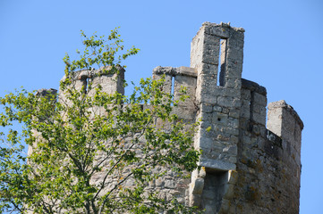 Tower of castel