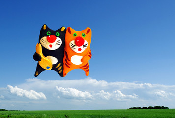 Two cats in the sky with fish