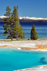 Thermal pool & Yellowstone Lake, Yellowstone National Park