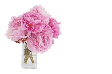 vase of pink peonies isolated on white