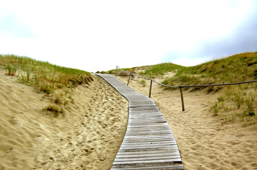 Wooden path through the Dead Dunes in Neringa, Lithuania