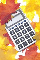 Autumn Economy