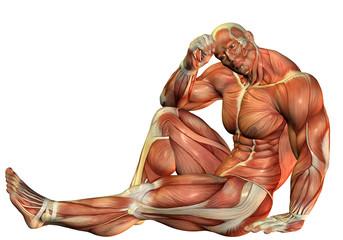 Wall Mural - Muskelaufbau Body Builder in sitzender Pose