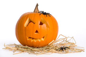 Jack O Lantern With Spiders