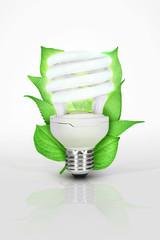 Ampoule écologique basse consommation