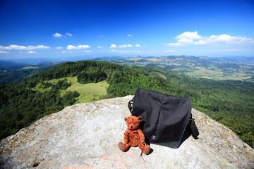 Teddybear travels
