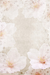 Papiers peints Fleurs Vintage Pink and white floral background with watter dots