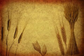 Retro Wheat Ears.
