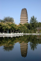 small wild goose pagoda xian china