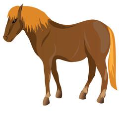 Fotobehang Pony Brown Horse