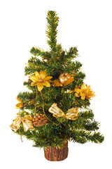 Christmas tree, isolated