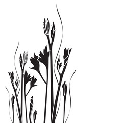 Vector silhouette of wild plant