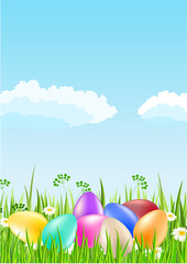 Many color easter eggs on grass under the sky