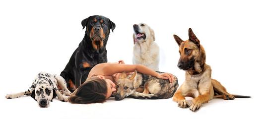 fillette et ses chiens