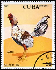 CUBA - CIRCA 1981 Jabao