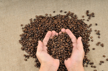 Hand full of coffee beans on canvas background