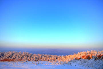 Fototapeta Hazy winter landscape