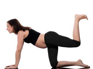 Pregnant Woman Workout Training