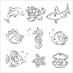 Sea Life Vector Sketches