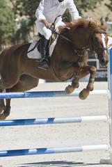 Salto a caballo.