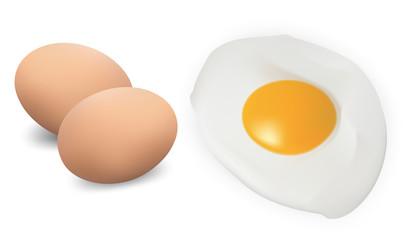 Fried eggs isolated on white. Vector illustration.