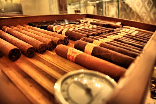 Club cigare