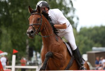Pferdespringprüfung03