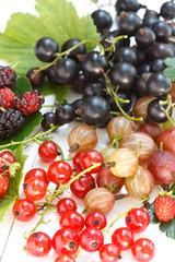 summer berries