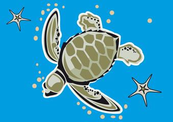 tortue marine étoile de mer