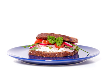 a rich healthy brown sandwich on a blue plate  isolated over whi