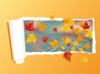 Autumn card, vector