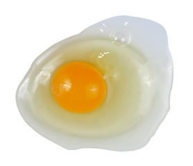 Egg's contents