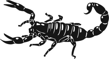 Scorpion Vinyl Ready Vector Illustration