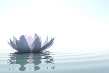 Wall Mural - Zen flower loto in water