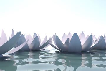 Fototapete - Zen loto flowers in water