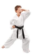Karate stance