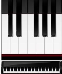 Vector series. set of piano keys in illustration