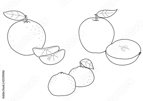 Frutta Da Colorare Mele Mandaranci E Mandarini Immagini E