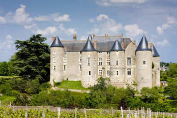 Fototapete - Luynes Castle with vineyard, Indre-et-Loire, Centre, France