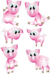 Set :pigs.