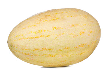yellow melon on white background