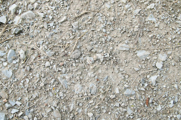 Pebble and small rock on the ground.