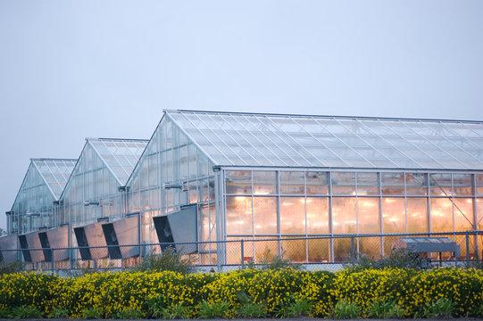industrial greenhouse in davis