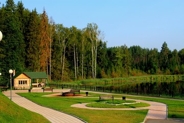 Nature Summer Lake