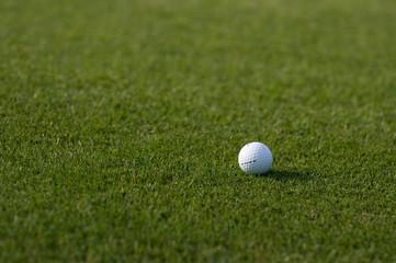 golf ball on golf course