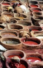 tannerie de fez-maroc