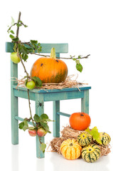 Halloween Pumpkin Chair With Spiders