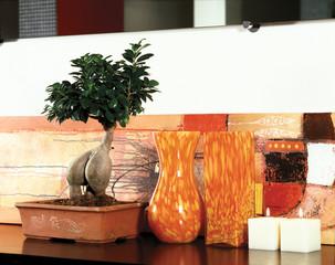 bonsai di ficus benjamina e vasi in pasta di vetro colorata